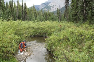 Photo of researcher test river water