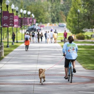 A dog and biker make their way across campus.