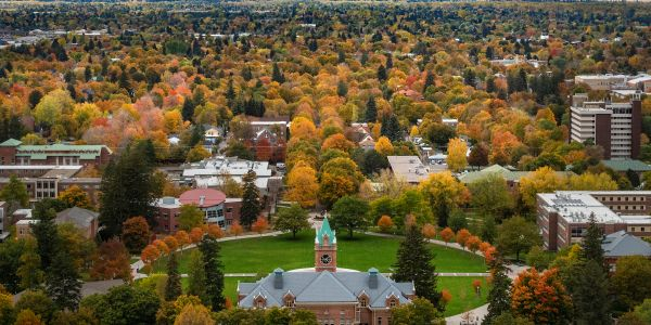 a view of campus in the fall