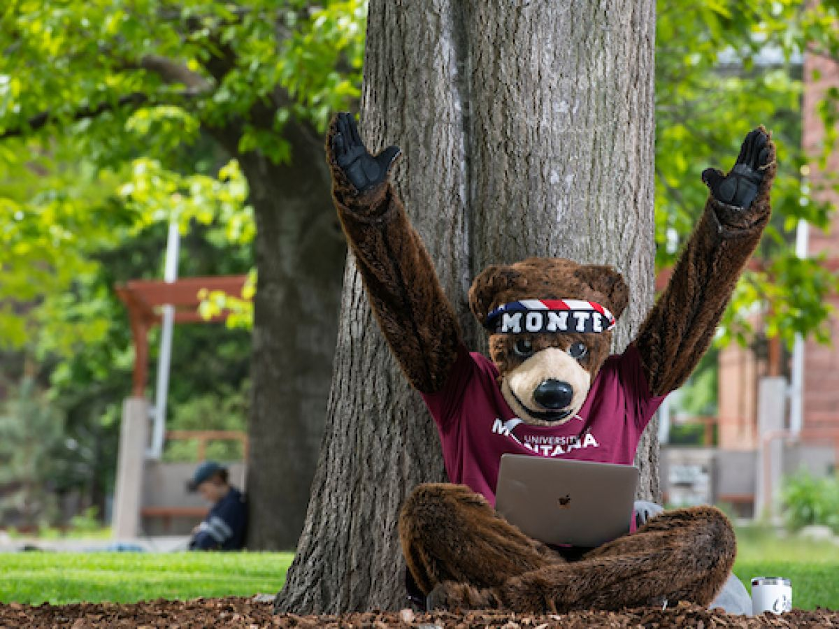 Monte the University of Montana Mascot is looking at his laptop and throws his hands up excitedly.