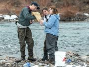 Image of students collecting samples in river.
