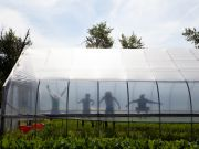 students jumping in the hoophouse