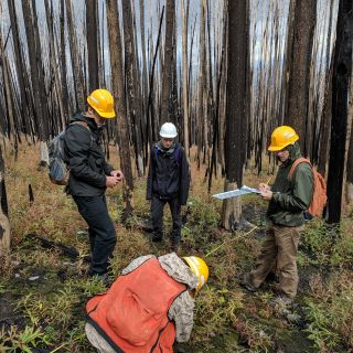Students in the field examine a burn
