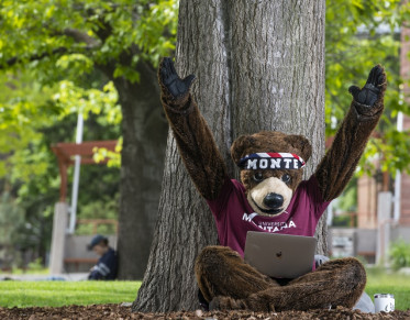 UM's mascot Monte excitedly using a laptop with his arms in the air