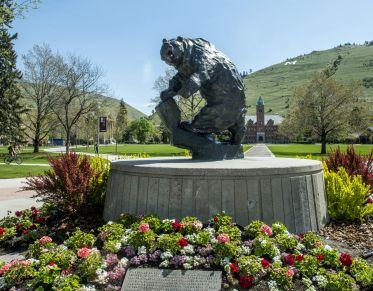 bear statue on um campus