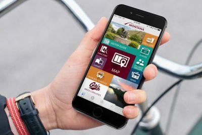 App displayed on phone