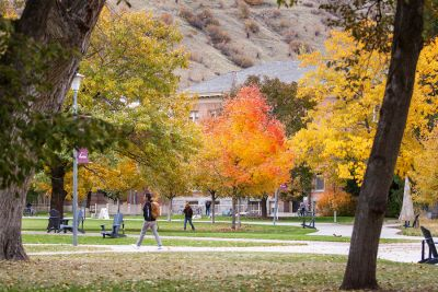 Students walk across the Oval amid the fall foliage on campus
