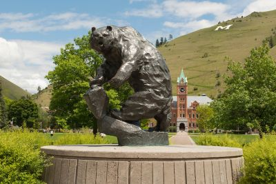 The Grizzly Bear statue at UM in summer