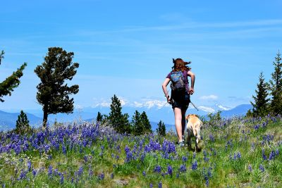 A woman hikes with her dog in the mountains of Montana.