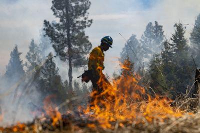 A firefighter walks alongside a wildfire against bright orange flames.