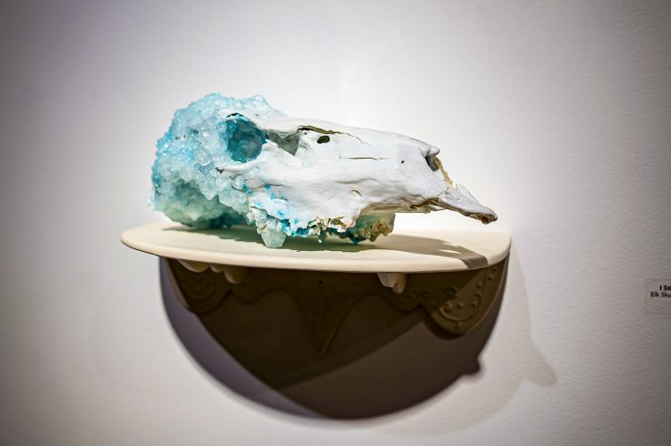 Close-up shot of what can only be described as a crystal skull. It looks like an animal skull had crystals growing on it.