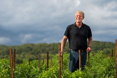 A picture of former U.S. Vice President Al Gore standing in a field.